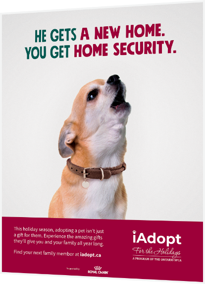 An example ad created by 5Fold for Ontario SPCA for their iAdopt campaign